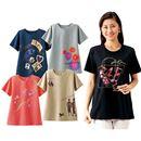 【レディース】 ゆったりビッグTシャツ(色柄違い5枚組) - セシール