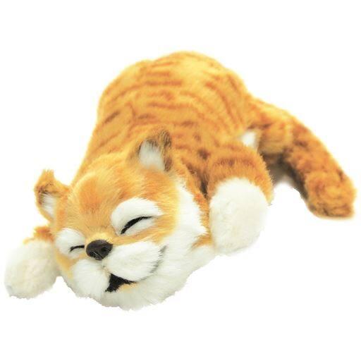 笑う!猫田課長 – セシール
