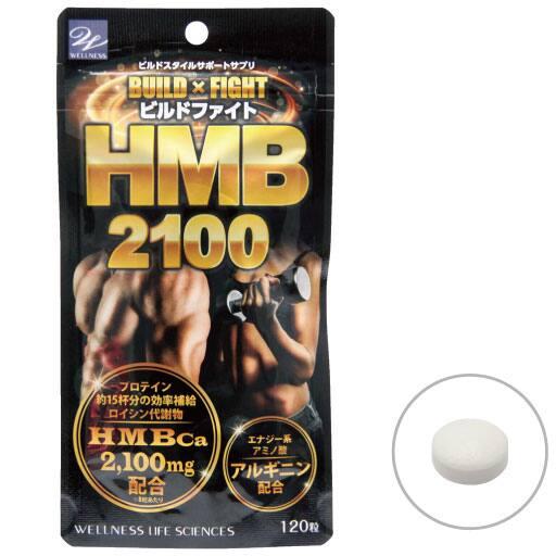 ビルドファイトHMB2100 2袋組の通販