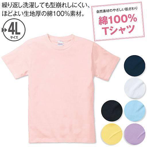 【レディース】 カラーTシャツ(半袖)