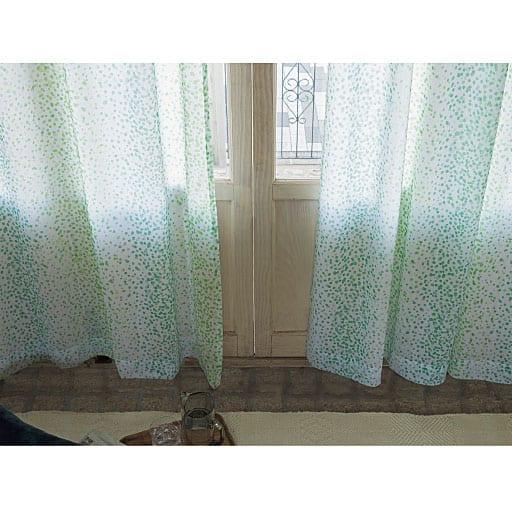 遮熱UVカットミラーレースカーテン(もようの森)の写真
