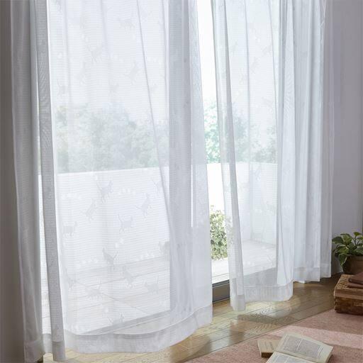透け感のあるミラーレースカーテン(猫柄)の写真