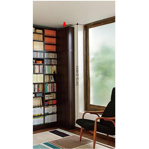 高さ違いの本がすっきり収まる壁面本棚(扉付き) – セシール