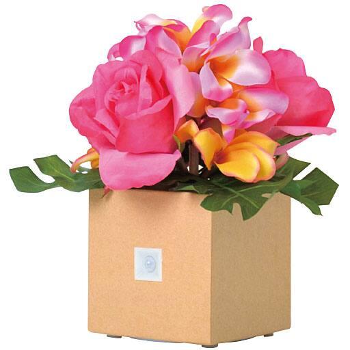 <セシール> ハワイアン アレンジ <サイズ>F <カラー>ピンク