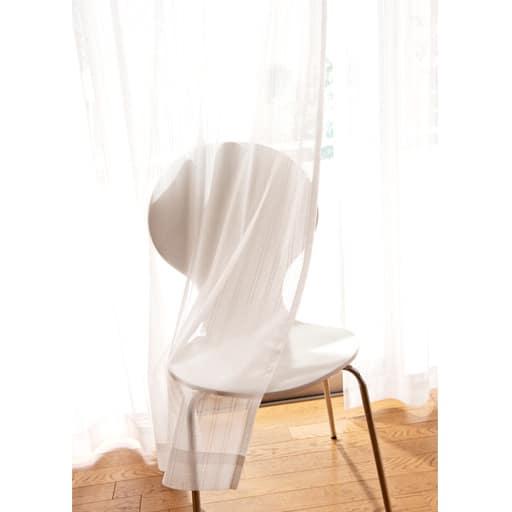 花粉キャッチレースカーテンの商品画像