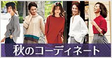 特集_夏のファッションコーディネート