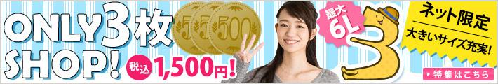 オンリー3枚ショップ!税込1,500円均一!詳細はこちら