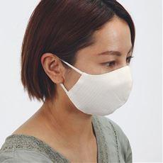 アプロン/洗える抗ウイルスマスク(2枚組)