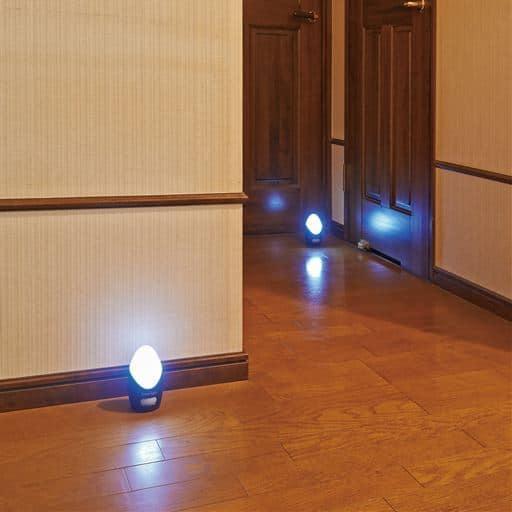 セシールLEDセンサーライト4個組 - セシール