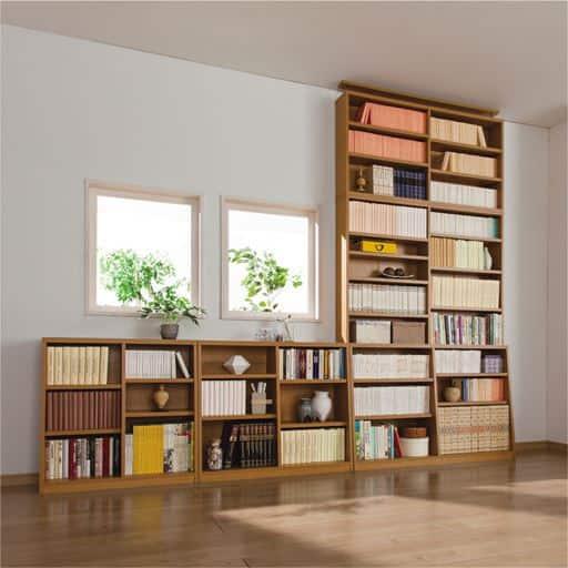 1cm単位で棚板の高さを変える頑丈壁面つっぱり本棚の写真