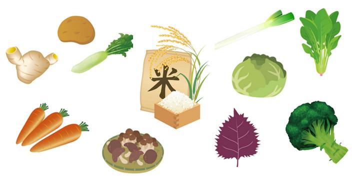 お米や野菜の保存方法、しっかりおさえて、お買い物上手になろう