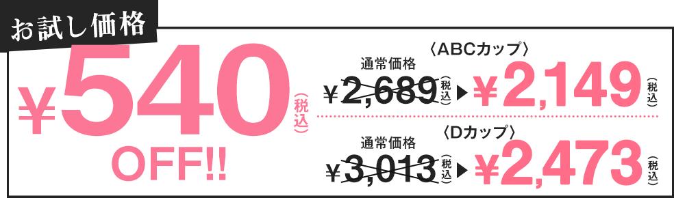 お試し価格540円(税込)off!!